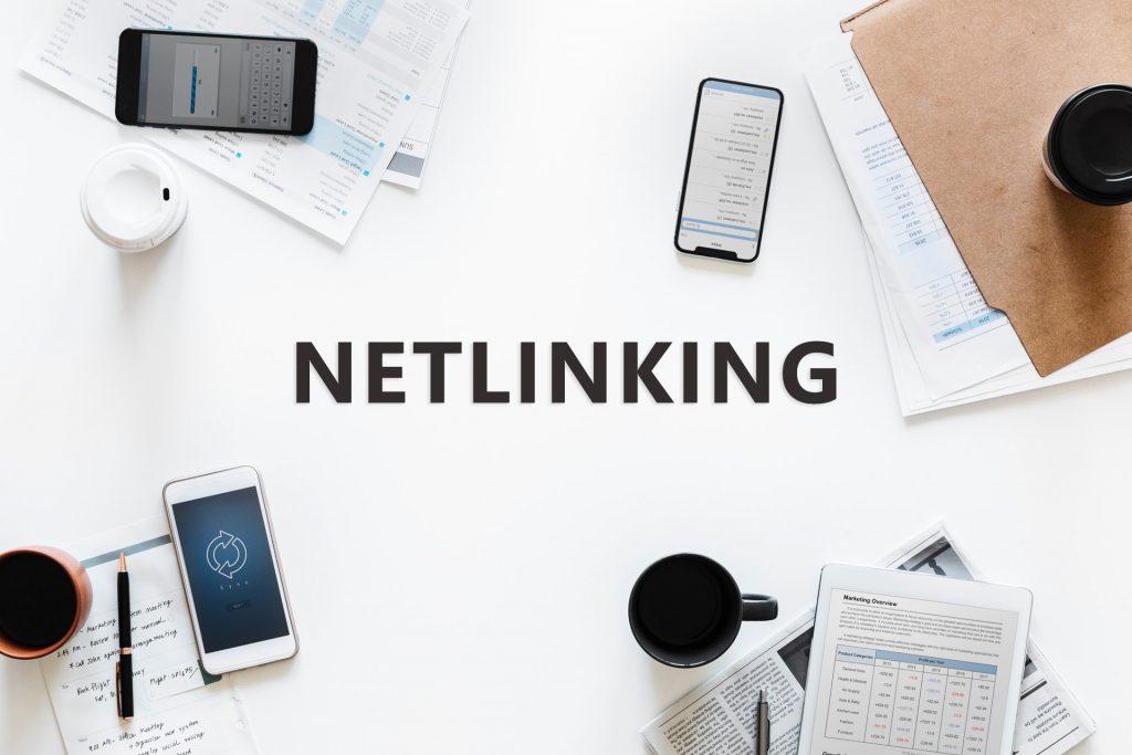 C'est quoi le Netlinking ?