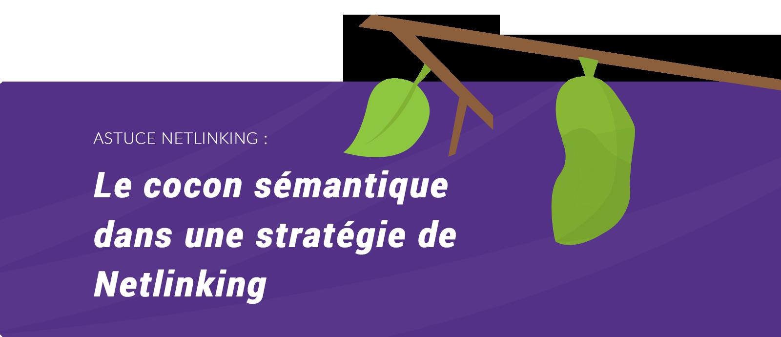 Cocon sémantique netlinking SEO